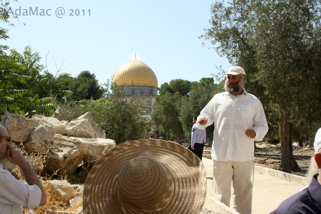 http://www.hamikdash.022.co.il/BRPortalStorage/a/36/31/49-Eemni1imo9.jpg